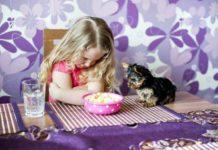 berrinches en niños